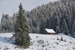 Un vieux parc à moutons abandonné couvert dans la neige au début de l'hiver Images libres de droits