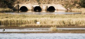 Un vieux pont dans le port Alfred Photographie stock libre de droits