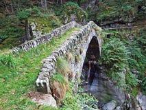 """Un vieux pont en pierre à travers le courant Ri d """"Alzasca, vallée magique ou Valle Magia Valle Maggia image libre de droits"""