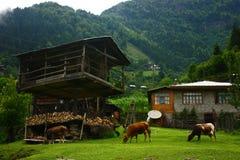 Un villaggio nelle montagne Immagine Stock Libera da Diritti