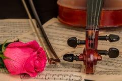Un violon, une rose de rouge et une musique de feuille Photographie stock