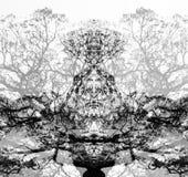 Un visage dans les arbres noirs et blancs Images libres de droits