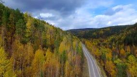 Un vol aérien de primevère farineuse au-dessus de la forêt Russie Bouriatie d'automne de route clips vidéos