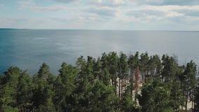 Un vol merveilleux à la belle forêt près de la rivière large Vue aérienne de forêt de pin en été banque de vidéos