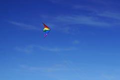 Un volo del cervo volante Immagini Stock