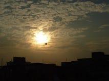 un volo dell'uccello nel cielo di sera Fotografia Stock Libera da Diritti