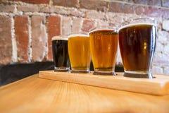 Un volo di quattro birre Fotografia Stock Libera da Diritti