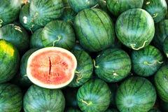 Un volume de pastèque de ferme organique Images libres de droits
