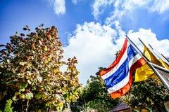 Un voyage de Chiang Mai Image stock