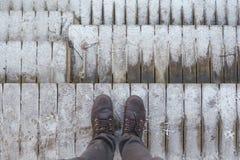 Un voyageur a l'intention de venir à la jungle sur de hautes montagnes pour rencontrer la première neige de l'année images stock