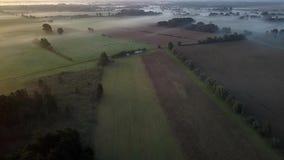 Un vuelo del abejón de la mañana sobre campos y prados con niebla almacen de video