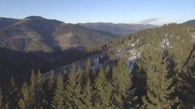 Un vuelo maravilloso al bosque hermoso en las montañas de Ucrania almacen de video