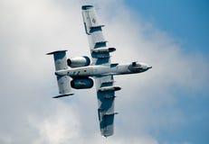 Un vuelo plano de 10 Warthog Foto de archivo libre de regalías