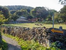 Un waymark giallo di Camino della freccia su un muro a secco - Ventas de Naron, Galizia, Spagna fotografia stock libera da diritti