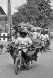 Un willl dell'uomo guida un motociclo Immagine Stock