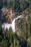 Un Yellowstone más bajo cae en el parque nacional de Yellowstone, Wyoming Imagenes de archivo