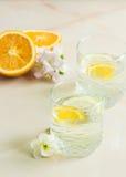 Un zumo de fruta de restauración con el limón y la naranja cortados Imágenes de archivo libres de regalías