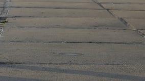 Una acera concreta y una pelota de tenis de salto en ella en el slo-MES almacen de video