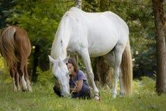 Una amazona joven con su caballo blanco que muestra al enlace los tienen gracias a la doma natural en un bosque en Pontevedra, Es fotografía de archivo libre de regalías