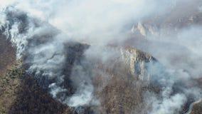 Una antena y un tiro móvil que muestran el bosque en la llama, humo grueso que cubre el área entera almacen de metraje de vídeo