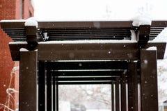 Una arcada coloreada avellano cubierta en nieve imágenes de archivo libres de regalías