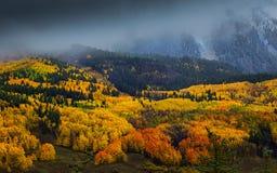 Una atmósfera de la caída en Colorado Fotos de archivo libres de regalías