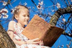 Una bambina che legge un libro su un albero del fiore Fotografie Stock