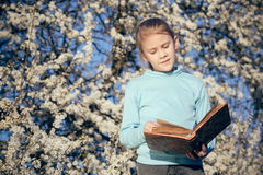 Una bambina che legge un libro su un albero del fiore Immagini Stock