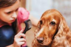 Una bambina da preoccuparsi per il cane ed i peli di pettinatura fotografia stock