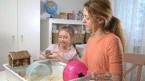 Una bambina e la sua mamma stanno giocando con un criceto minuscolo stock footage