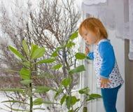 Una bambina osserva fuori una finestra Immagine Stock