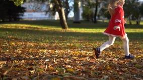 Una bambina in un vestito rosso dà dei calci alle foglie cadute giallo, movimento lento archivi video