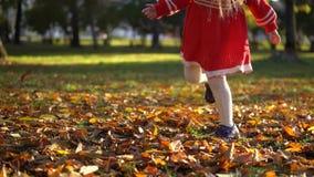 Una bambina in un vestito rosso dà dei calci alle foglie cadute giallo, movimento lento video d archivio