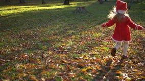 Una bambina in un vestito rosso funziona sulle foglie gialle archivi video