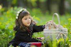 Una bambina in una corona osserva un coniglio in un canestro al tramonto in un parco Fotografie Stock Libere da Diritti