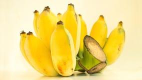 Una banana coltivata Immagine Stock