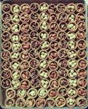 Una bandeja de dulces turcos con las nueces Foto de archivo