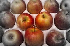 Una bandeja de la manzana por completo de blanco y negro parcial de las manzanas foto de archivo libre de regalías