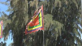 Una bandera abigarrada vacía que agita en el viento almacen de video