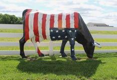 Una bandera americana en una vaca Fotos de archivo libres de regalías