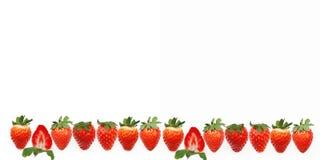 Una bandera con una fila de las fresas enteras jugoso de las fresas fresco y de una mitad Imagen de archivo libre de regalías