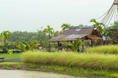 Una baracca di legno ha ricoperto di paglia la paglia e lo zinco della pioggia sfocia nel Th fotografia stock libera da diritti