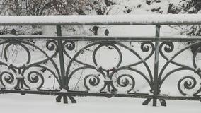 Una barandilla de un puente en invierno Imágenes de archivo libres de regalías