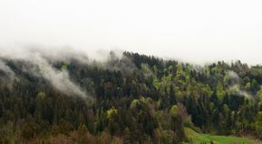 Una bella collina in nebbia Vista della campagna di Aplin fotografia stock