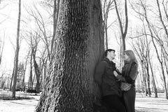 Una bella coppia amorosa che sorride e che bacia un grande albero nel parco Fotografia Stock Libera da Diritti