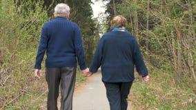 Una bella coppia anziana, camminando nel parco, parlante gentilmente Buon umore, vita positiva L'amore, si tiene per mano video d archivio