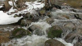 Una bella corrente cristallina nell'inverno con neve attraversa il legno video d archivio