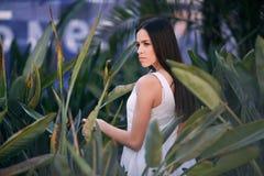 Una bella giovane donna sta posando sul fondo delle foglie La bella ragazza nel parco Una femmina positiva in una foresta tropica immagini stock