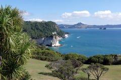 Una bella linea costiera, Nuova Zelanda immagine stock