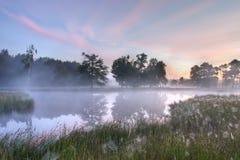Una bella mattina nebbiosa Fotografia Stock Libera da Diritti